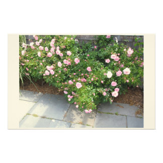 Roses In Summer Stationery Paper