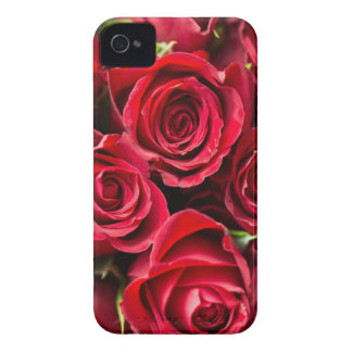 Roses iPhone 4 Case-Mate Case