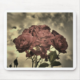 Roses of Love Mousepads