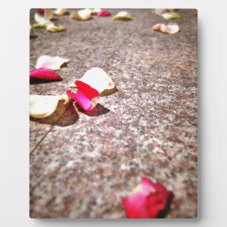 Roses Petal Photo Plaques