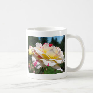 ROSES Pink Yellow Rose Flowers 3 Cards Gifts Mugs