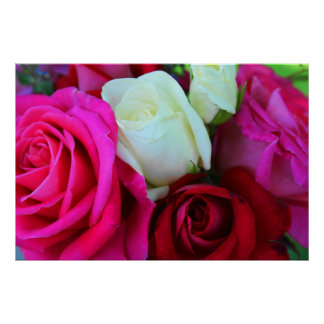 Roses Print