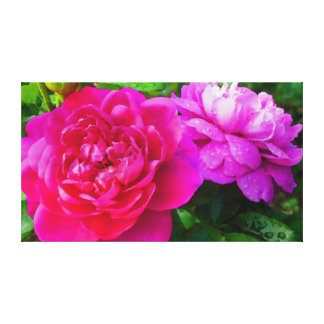Roses with morning dew canvas print