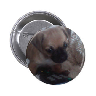 Rosie Roo The Jug Pinback Button