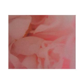 Rosy glow peony flower canvas print