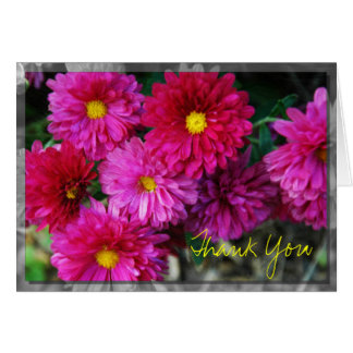 Rosy Mums Thank You Card