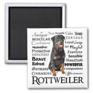Rottie Traits Magnet