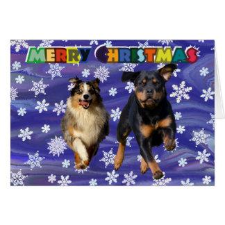Rottweiler and collie dog christmas card