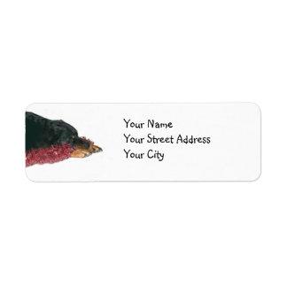 Rottweiler Christmas Return Address Label