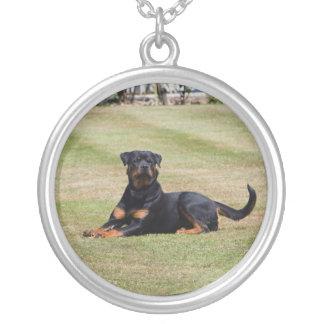 Rottweiler dog necklace, pendant, gift idea