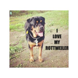 rottweiler love w pic tan canvas print