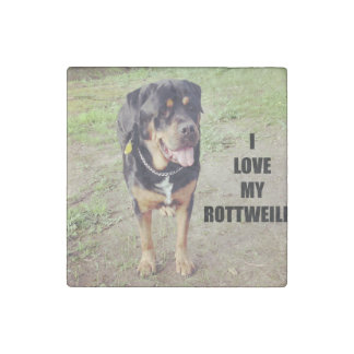 rottweiler love w pic tan stone magnet