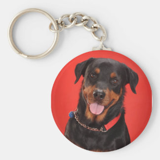 Rottweiler on Red Basic Round Button Key Ring