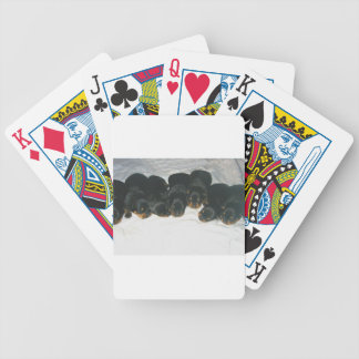 Rottweiler Puppies Bicycle Playing Cards