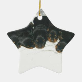 Rottweiler Puppies Ceramic Ornament