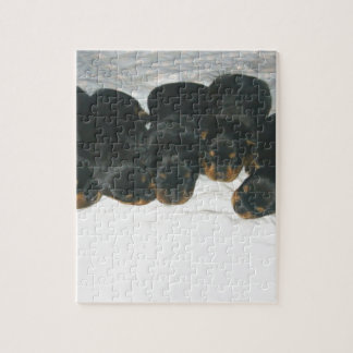Rottweiler Puppies Puzzles