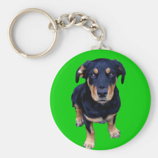 rottweiler puppy black tan dog eye contact key chain