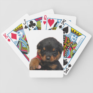 Rottweiler Puppy Red Bicycle Playing Cards