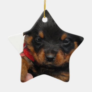 Rottweiler Puppy Red Ceramic Ornament