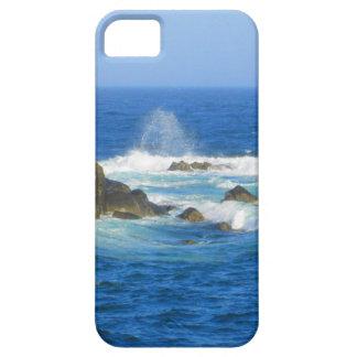 Rough Cape Neddick Coast iPhone 5 Case