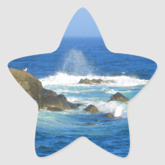 Rough Cape Neddick Coast Star Sticker