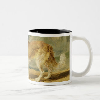 Rough-coated Collie, 1809 (oil on board) Coffee Mug