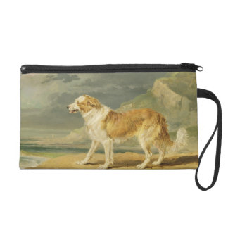 Rough-coated Collie, 1809 (oil on board) Wristlets