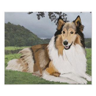 Rough Collie against the Yorkshire Dales Poster