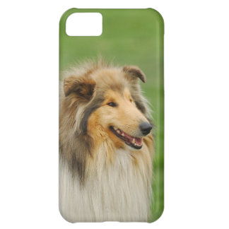 Rough Collie iPhone 5C Case