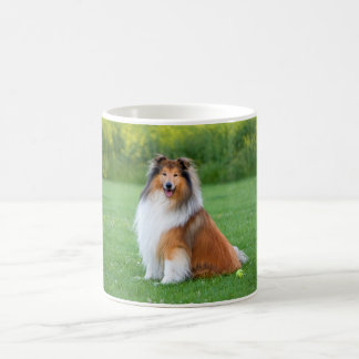 Rough Collie dog beautiful photo coffee mug, gift Basic White Mug