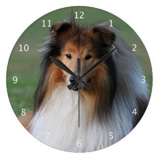 Rough collie dog beautiful photo portrait clocks