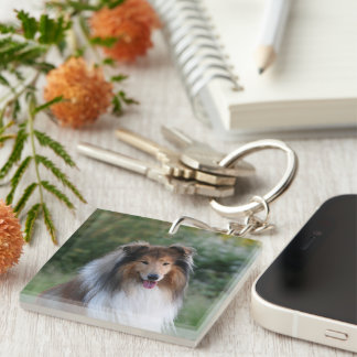 Rough Collie dog beautiful photo portrait, gift Double-Sided Square Acrylic Key Ring