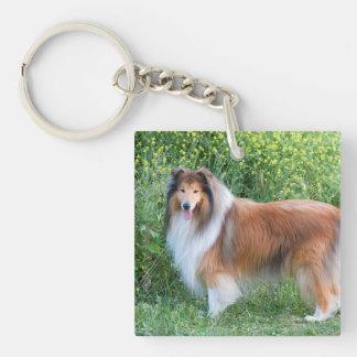 Rough Collie dog beautiful photo portrait, gift Acrylic Keychain