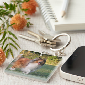 Rough Collie dog beautiful photo portrait, gift Single-Sided Square Acrylic Key Ring