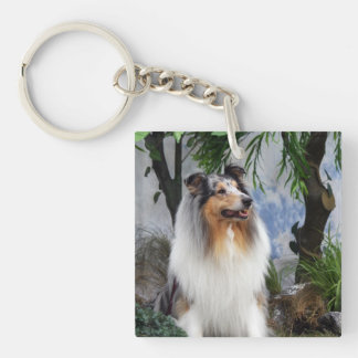 Rough Collie dog blue merle beautiful photo, gift Double-Sided Square Acrylic Key Ring