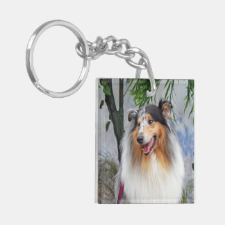 Rough Collie dog blue merle beautiful photo, gift Double-Sided Square Acrylic Key Ring