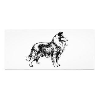 Rough collie dog illustration custom rack card
