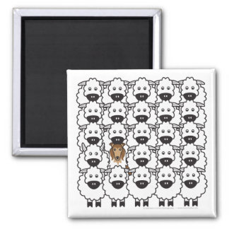 Rough Collie in the Sheep Square Magnet