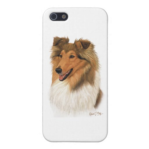 Rough Collie Cases For iPhone 5