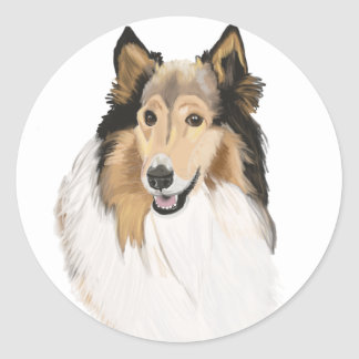 Rough Collie, Long Haired Collie Portrait Classic Round Sticker