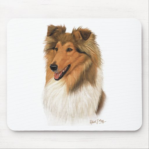 Rough Collie Mouse Pads