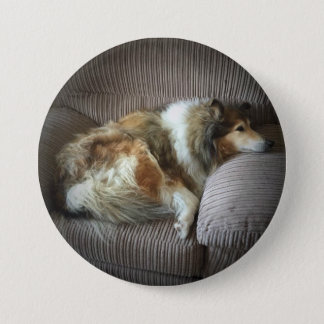 Rough collie on armchair 7.5 cm round badge