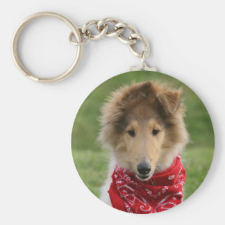 Rough collie puppy dog cute beautiful photo basic round button key ring