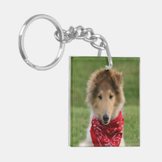 Rough Collie puppy dog cute beautiful photo Double-Sided Square Acrylic Key Ring
