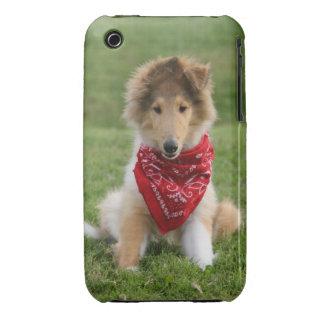 Rough collie puppy dog cute beautiful photo iPhone 3 Case-Mate case