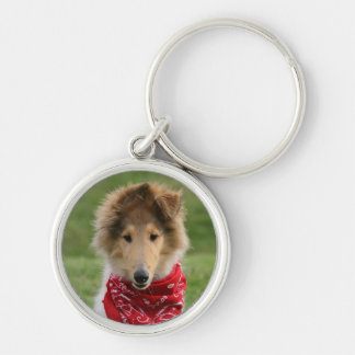 Rough collie puppy dog cute beautiful photo Silver-Colored round key ring