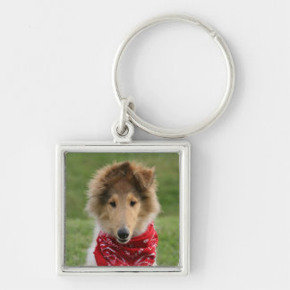 Rough collie puppy dog cute beautiful photo Silver-Colored square key ring