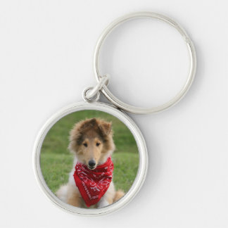Rough collie puppy dog cute beautiful photo keychain