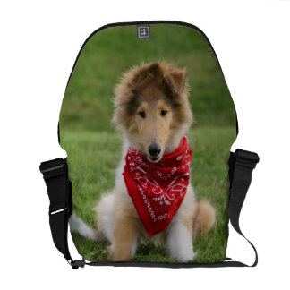 Rough collie puppy dog cute beautiful photo commuter bag