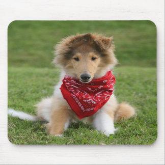 Rough collie puppy dog cute beautiful photo mousepads